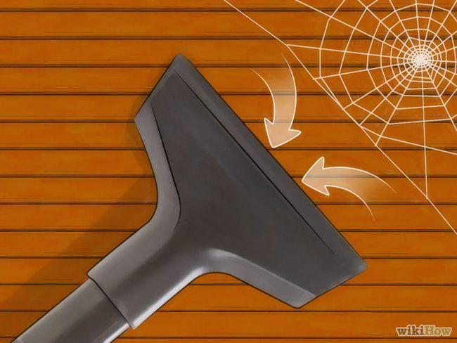 Imagen titulada deshacerse de las arañas en la Casa Paso 5