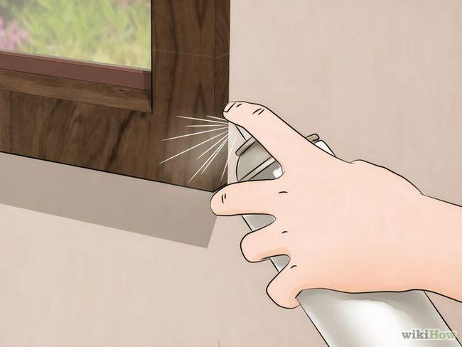 Imagen titulada deshacerse de las arañas en la Casa Paso 6