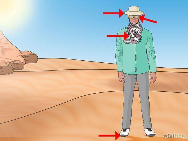 Cómo sobrevivir en el desierto