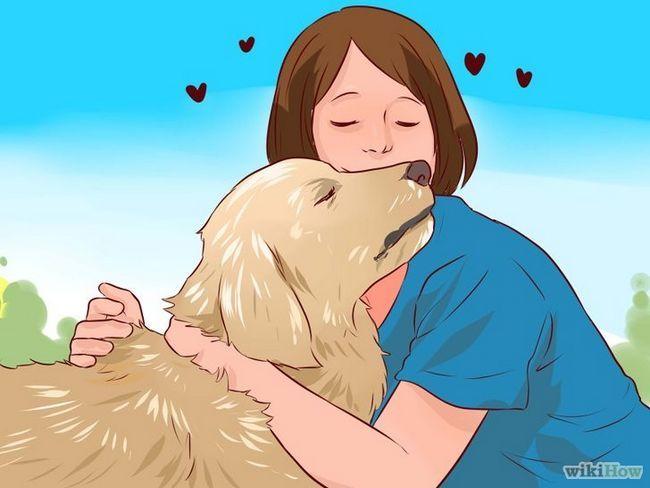 Imagen titulada El amor a su perro Paso 5
