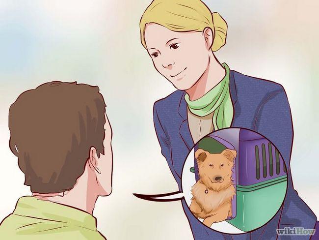 Imagen Nave titulado un perro Paso 19