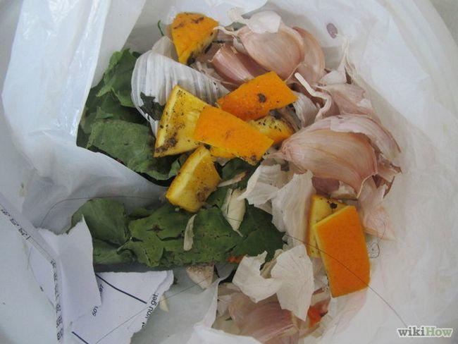 Imagen titulada Use cáscaras de frutas cítricas en el hogar y jardín Paso 7Bullet5